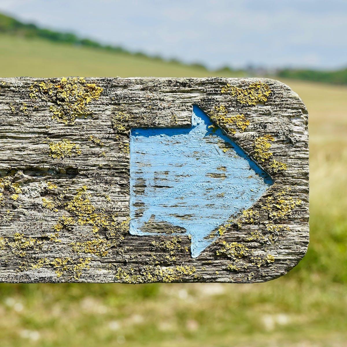Titelbild-Wegweiser-Stolpersteine-Schild-Pfeil-pixabay-2432209-MikesPhotos